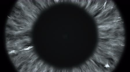 dilated pupil : The gray eye is an extreme close-up of the iris and pupil, widening and tapering.