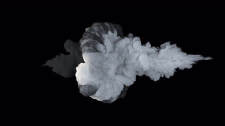 goed en kwaad : Fighting, a symbol of good and evil. The collapse of smoke in slow motion on a black background.