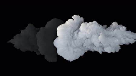 danger of collapse : Fighting, a symbol of good and evil. The collapse of smoke in slow motion on a black background.