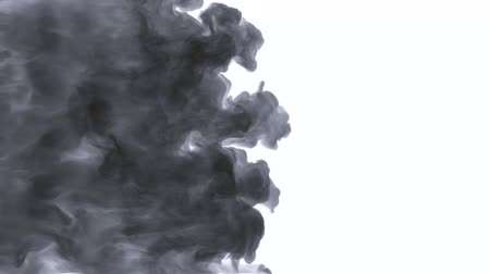 Smoke, steam, fog, cloud. Smoke fills the screen, wonderful transition. Slow motion, isolated. Organic flow