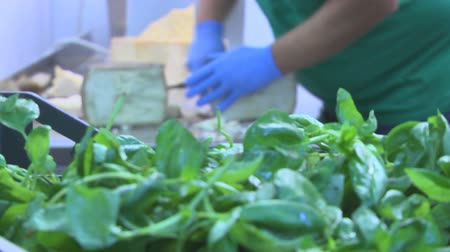 amadurecida : hands cut a slice of matured cheese with emerald basil leaves in the foreground Stock Footage
