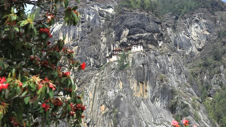 bhutan : taktshang monastery on the cliff in bhutan