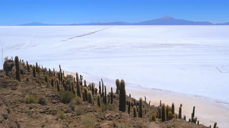 spící : View of dormant volcano with the world largest Salt Flat from Incahuasi Island in Uyuni, Bolivia Dostupné videozáznamy