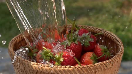 Pour water to the bamboo basket full of strawberries in Slow Motion Stok Video