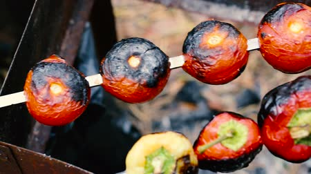 grelha : Vegetable skewers on barbecue grill. Vídeos