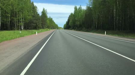 Timelapse on the road through the forest in good weather in the summer