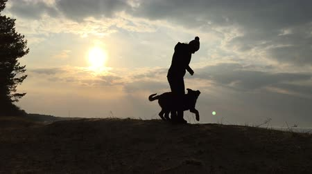 Silhouette of the girl and dog against the sky and the sun. Slow motion video.