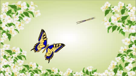 yasemin : Animation of illustration seamless loop Swallowtail Inachis iobutterflies in jasmine trees Stok Video