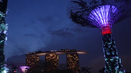 baía : The Supertree at Gardens by the Bay