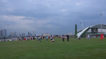 Gathering for kite enthusiast at Marina Barrage May 31 2015 in Singapore. Dostupné videozáznamy