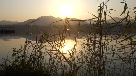 pastoral : West Lake in Hangzhou, China in the evening with the golden sunset Stok Video