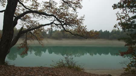 rochoso : turquoise forest lake in the fog