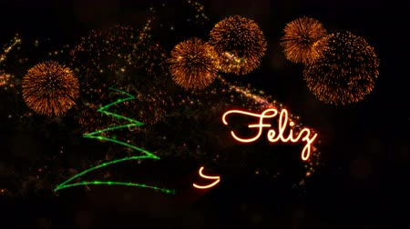 calligraphic : Happy New Year text in Spanish Feliz Ano Nuevo animation over pine tree with sparkling particles and fireworks on a snowy background Stock Footage