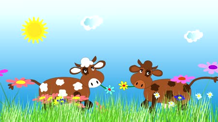 dairy animal : Funny cow dancing and grazing on a green meadow