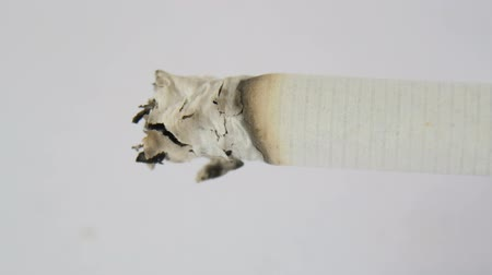 burn out : Burning Cigarette, macro time-lapse