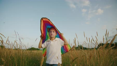 field study : Small Boy Playing With Kite In The Field At Sunset. Boy Is Running And Happy In The High Grass. Clouseup