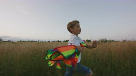 Small Boy Playing With Kite In The Field At Sunset. Boy Is Running And Happy In The High Grass. Clouseup
