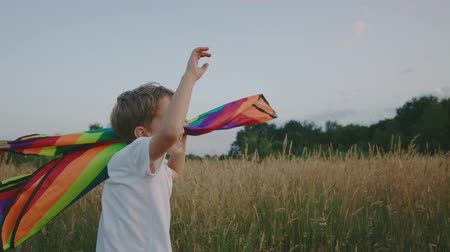 запуск : Small Boy Playing With Kite In The Field At Sunset. Boy Is Running And Happy In The High Grass. Clouseup