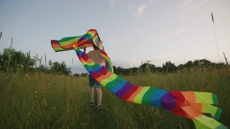 коршун : Small Boy Playing With Kite In The Field At Sunset. Boy Is Running And Happy In The High Grass. Clouseup