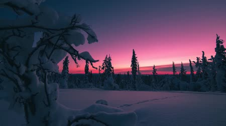 northern nature : Nice event in Finland. Clear, frosty sky. Windless, winter, frosty weather. From the sunset in the sky formed an incredible beauty of color.
