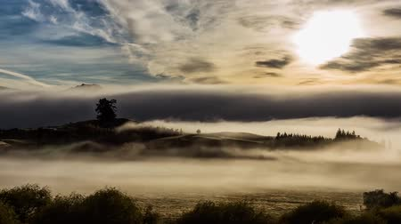 marian : Clouds Are Floating on The Ground in The Mountains of New Zealand. Stock Footage
