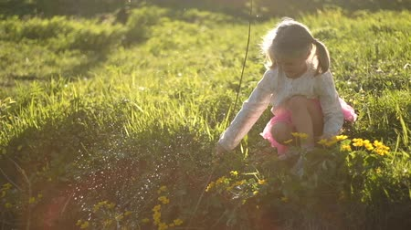 saia : A little girl of four years old with blond hair is sitting in the grass by the river playing with a twig. Spray. Yellow flowers Trollyus