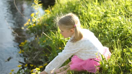 выполнять : little girl with blond hair collecting yellow spring flowers globeflower on the bank of a river.