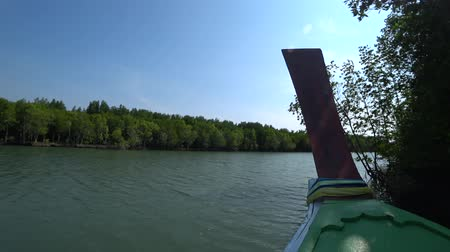 gyertyafa : sail view along the mangroves forest beside sea.