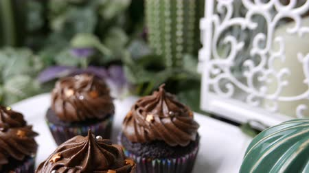 мини : Delicious homemade Chocolate muffin cupcake set on white plate. Стоковые видеозаписи
