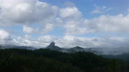 tlen : Fog and cloud covering the mountain forests in a nature reserve. Wideo