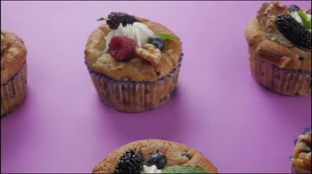 tentação : Blueberries Muffin cupcake on purple background. Vídeos