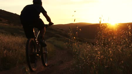 bicycle : Man Mountain Bike Riding In Meadow at Sunset