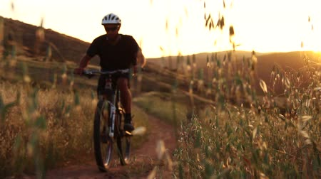 talaj : Man Mountain Bike Riding In Meadow at Sunset