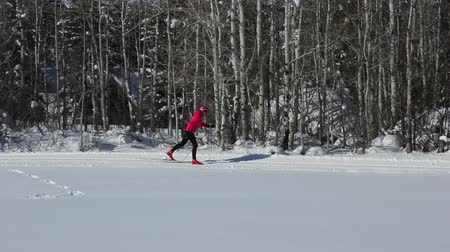 лыжник : Woman Cross Country Skiing In Winter Sport HD