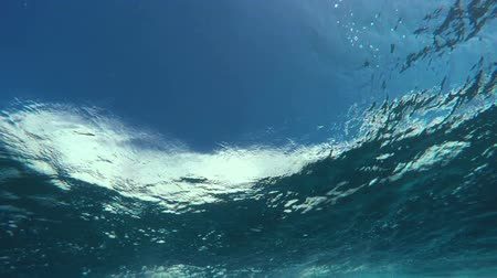 claro : Underwater Angle of Tropical Blue Ocean Wave Crashing Vídeos