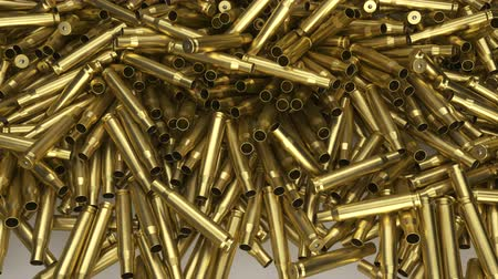 kalibre : 3d bullet shells on a white background