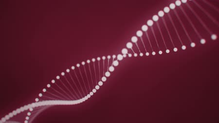 светящийся : Rotating DNA formed by white luminous molecules on a red background