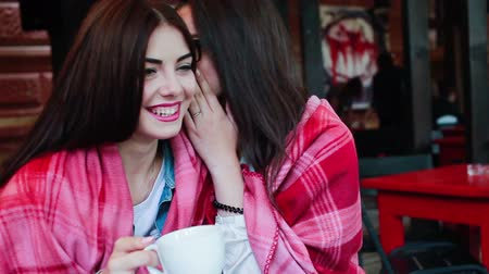 falar : Two young and beautiful girls gossiping on the terrace with a cup of coffee