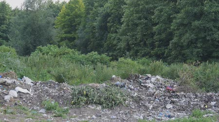 лесоматериалы : a large pile of garbage in the woods. People pollute the environment. Household waste lie in the nature. Ecology is very bad. Forest contaminated waste Стоковые видеозаписи