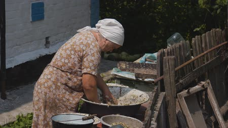yoksulluk : Old woman preparing food. Cooking in unsanitary conditions. preparing food for the duck farm. old woman at the age of Stok Video