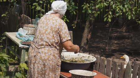 бабушка : preparation of pet food. very old woman preparing a meal in a large bowl Стоковые видеозаписи