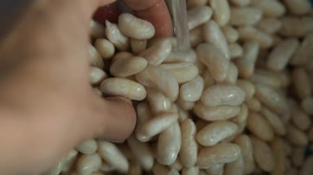 colander : White cannellini beans being rinsed by female hands in a colander