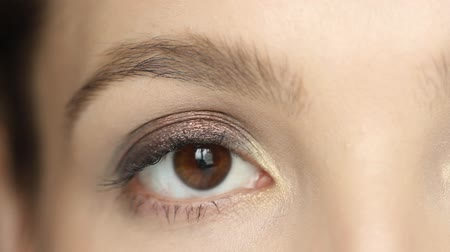 close up shot : Macro shot of a brown woman eye with eyeshadow make up