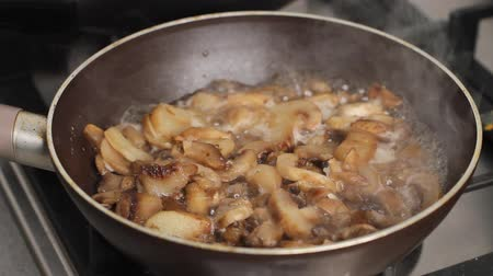 シチュー : Mushrooms being cooked in frying pan in kitchen, delicious dish in olive oil and sauce