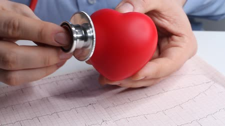 cardiological : Cardiologist doctor checks heart rate on a toy red heart. Phonendoscope, stethoscope and cardiogram. Healthcare and early diagnosis concept.