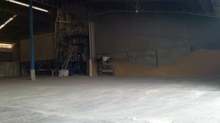 Mini loaders are preparing rice in the warehouse. Stok Video