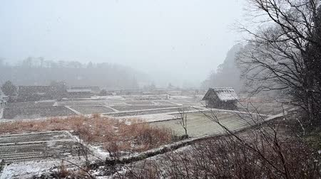 Winter of Shirakawago historic village with snow falling footage