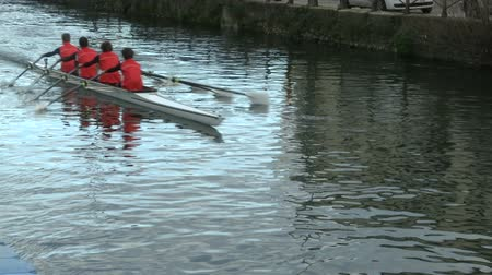 csapatmunka : Rowers training in small canal in Milan, Italy  Stock mozgókép