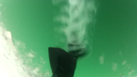 pervane : Underwater shot of propeller of powerful outboard engine starting