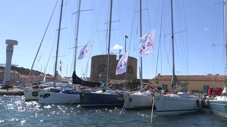 regata : Sailing boats docked before a regatta in windy day